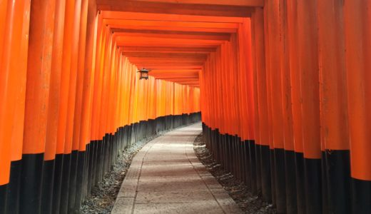 【感想・読書メモ】綿矢りささん「手のひらの京」 内側から見た京都の物語